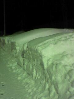 雪!雪だるま作りたい!!